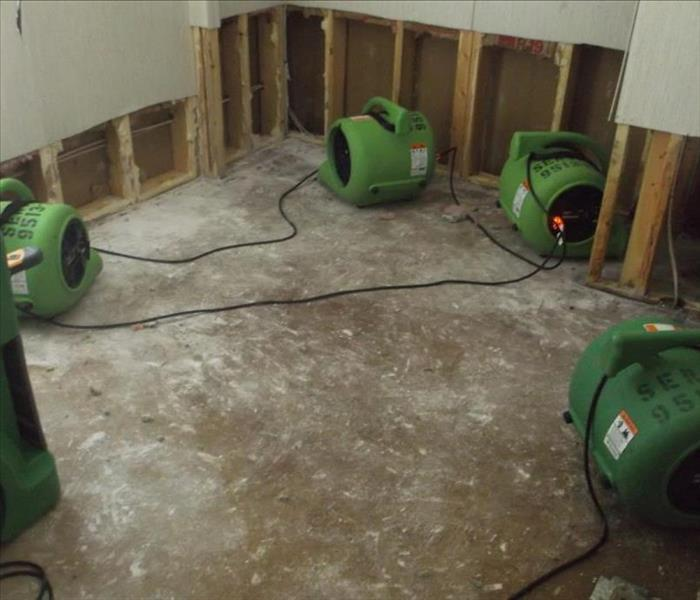 Mold Damage to Detroit Apartment After