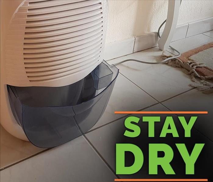 Dehumidifier and the phrase Stay Dry