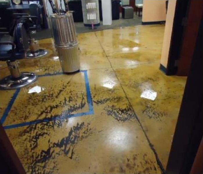 Water Damage Why You Should Call SERVPRO of Grosse Pointe for Sewage Cleanup