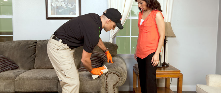 Detroit, MI carpet upholstery cleaning
