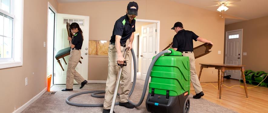 Detroit, MI cleaning services